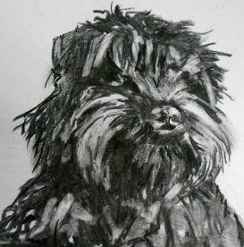 molly-charcoal